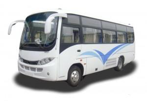 mini-bus-300x206